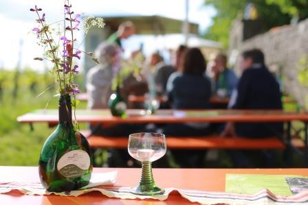 Weinfest im Weinberg mit Frühjahrsweinverkostung @ Weinberg, Saalecker Schlossberg | Hammelburg | Bayern | Deutschland